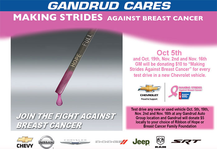 Making Strides Against Breast Cancer 2014